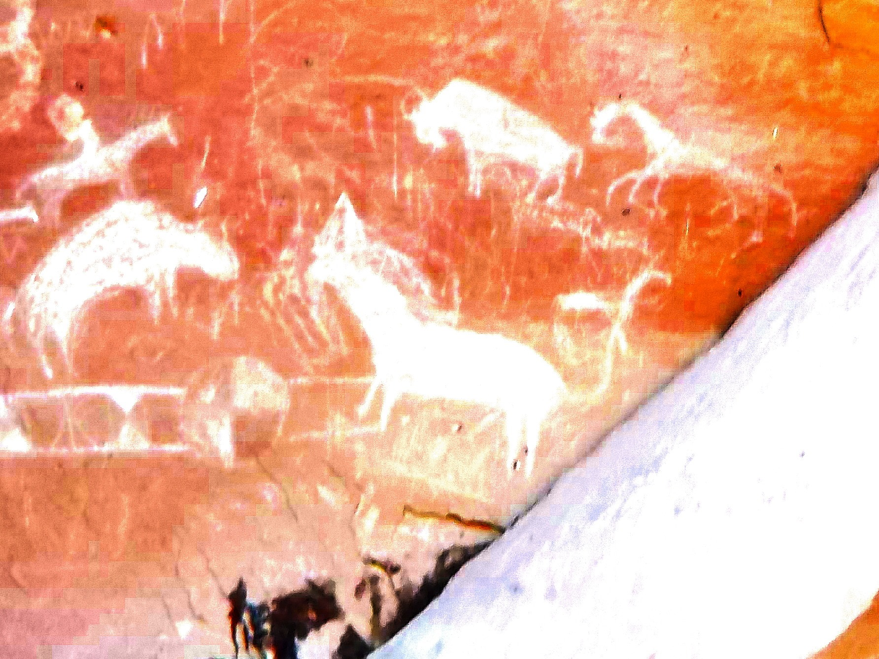 Native American Rock Art San Rafael Desertbook Cliffs Utah Life